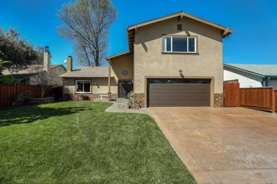 309 Burning Tree Drive, San Jose, CA 95119 - #: ML81743270