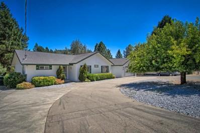 20495 High Ct, Lakehead, CA 96051 - MLS#: 17-4429