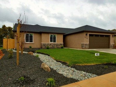 20286 Ballentine Dr. UNIT Lot 40, Anderson, CA 96007 - MLS#: 17-6067