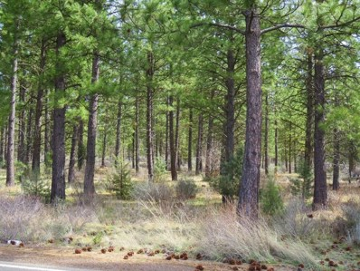 Black Ranch Road, Burney, CA 96013 - MLS#: 18-1678