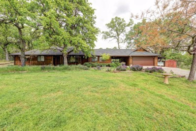 13518 Valley Creek Ln, Redding, CA 96003 - MLS#: 18-2230