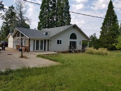 21190 Deer Springs Rd, Manton, CA 96059 - MLS#: 18-4277