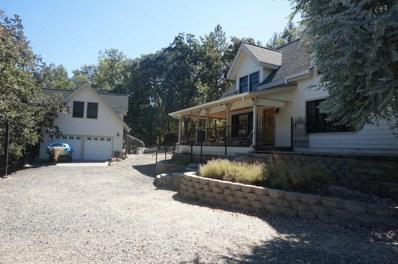 310 Goose Ranch Rd, Lewiston, CA 96052 - MLS#: 18-4376