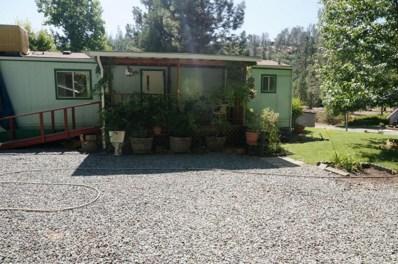 821 Reo Lane, Douglas City, CA 96024 - MLS#: 18-4418