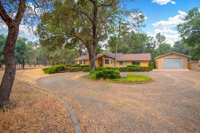 3401 Carriage Ln, Cottonwood, CA 96022 - MLS#: 18-4659