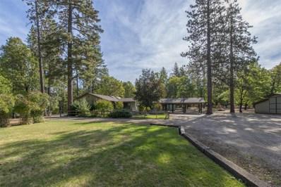 29150 S. Cow Creek Rd., Whitmore, CA 96096 - MLS#: 18-5567