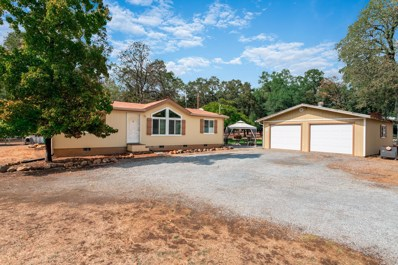 13830 Daniels Ln, Redding, CA 96003 - MLS#: 18-5710
