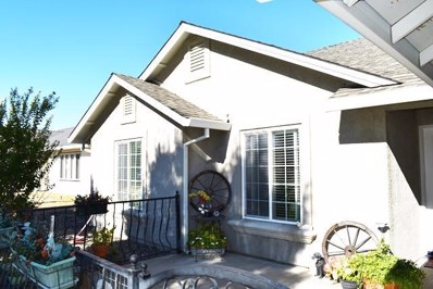 22370 River View Dr., Cottonwood, CA 96022 - MLS#: 18-5753