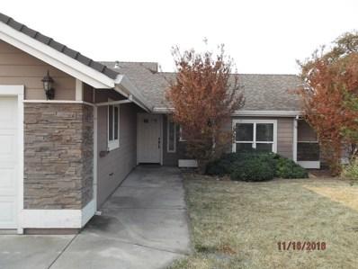 19381 Bonanza King, Cottonwood, CA 96022 - MLS#: 18-6420