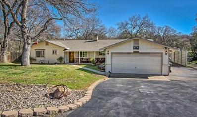 19334 McCann Rd, Cottonwood, CA 96022 - MLS#: 18-918