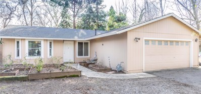 703 Leland Ct, Redding, CA 96001 - MLS#: 19-674