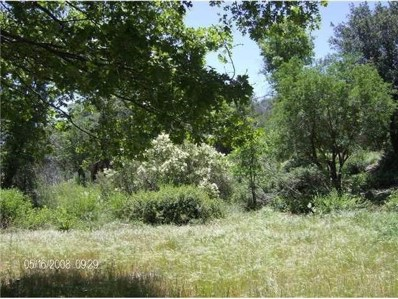 Riverwood Road 81, Julian, CA 92036 - MLS#: 170004676