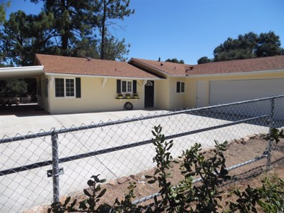 29076 Laguna Trl, Pine Valley, CA 91962 - MLS#: 170042798