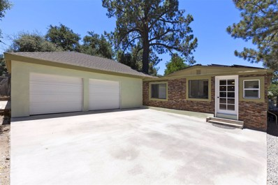 29023 Spring Rd, Pine Valley, CA 91962 - MLS#: 170049123