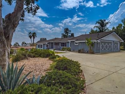 719 Elm Tree Ln, Fallbrook, CA 92028 - MLS#: 170059793