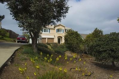 15748 Rainbird Rd, Ramona, CA 92065 - MLS#: 180016889