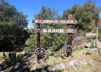 24125 Wildwood Glen Ln, Alpine, CA 91901 - MLS#: 180017576