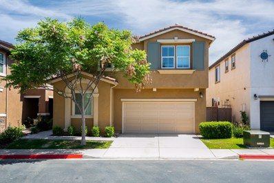 10065 Leavesly Trail, Santee, CA 92071 - MLS#: 180036539