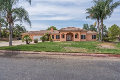1177 School Daze, Ramona, CA 92065 - MLS#: 180046599
