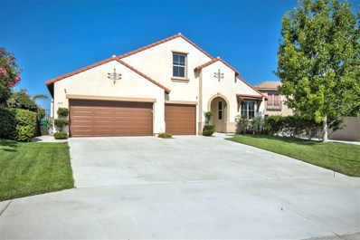 1113 Parkview Drive, Oceanside, CA 92057 - MLS#: 180047565