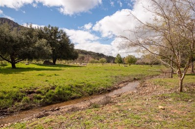 18173 Lyons Valley Rd, Jamul, CA 91935 - #: 190011768