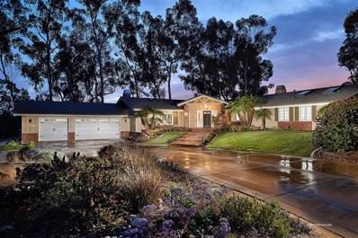 15166 Las Planideras, Rancho Santa Fe, CA 92067 - #: 190019691