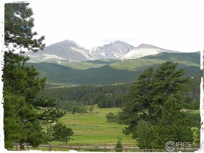 Peak To Peak Hwy, Estes Park, CO 80517 - MLS#: 771392