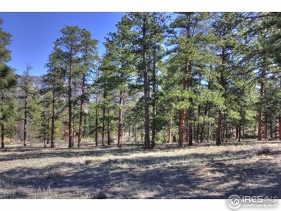 Hondius Cir, Estes Park, CO 80517 - MLS#: 819218