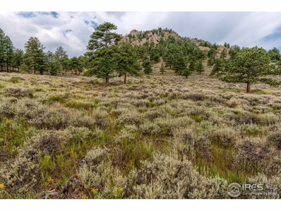 900 Shad Ct, Estes Park, CO 80517 - MLS#: 858161