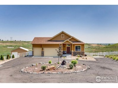 10351 E 145th Ave, Brighton, CO 80602 - #: 878357