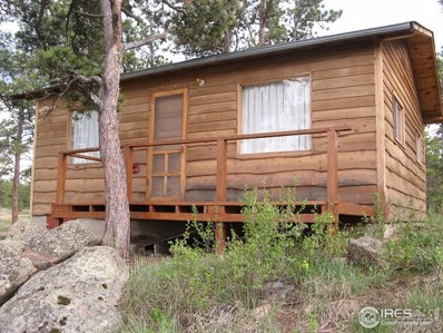 490 Letitia Drive, Red Feather Lakes, CO 80545 - #: 884248
