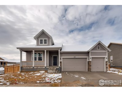 729 Willow Oak St, Brighton, CO 80601 - #: 891718
