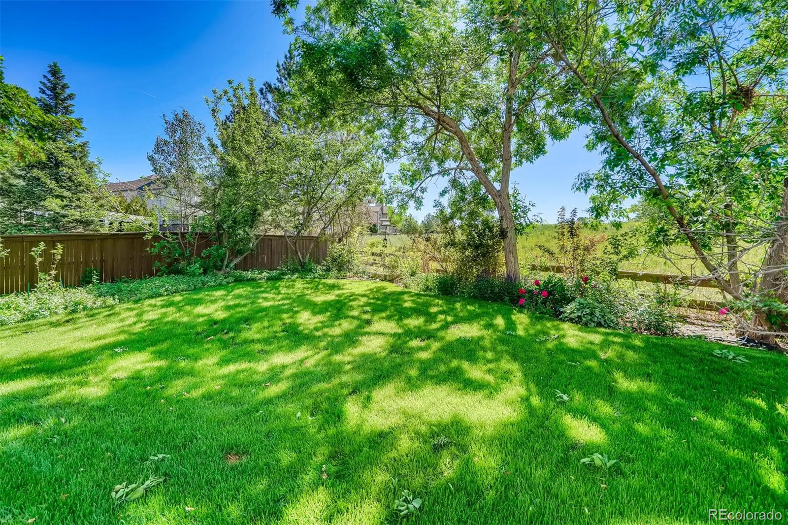 MLS# 1567040 - 29 - 10024 Cottoncreek Drive, Highlands Ranch, CO 80130