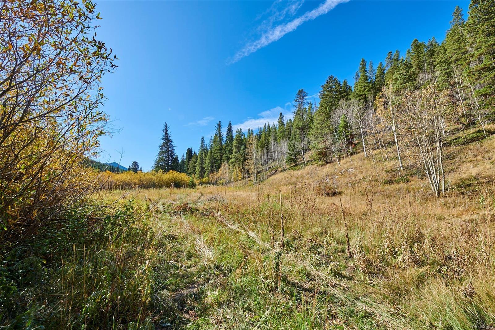 MLS# 1650061 - 26 - 2919 S Beaver Creek Road, Black Hawk, CO 80422