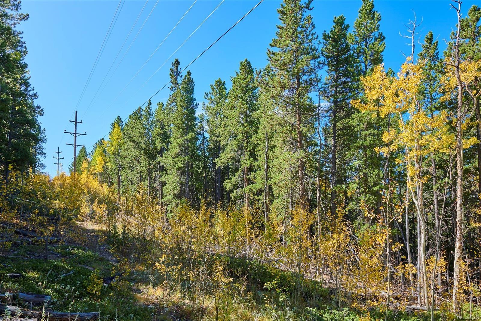 MLS# 1650061 - 33 - 2919 S Beaver Creek Road, Black Hawk, CO 80422