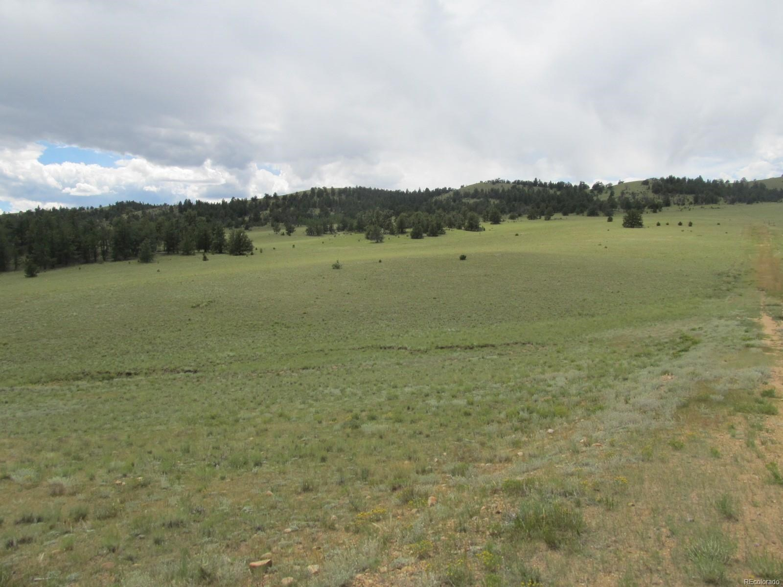 MLS# 1702462 - 1 -   Co Road 17b, Hartsel, CO 80449
