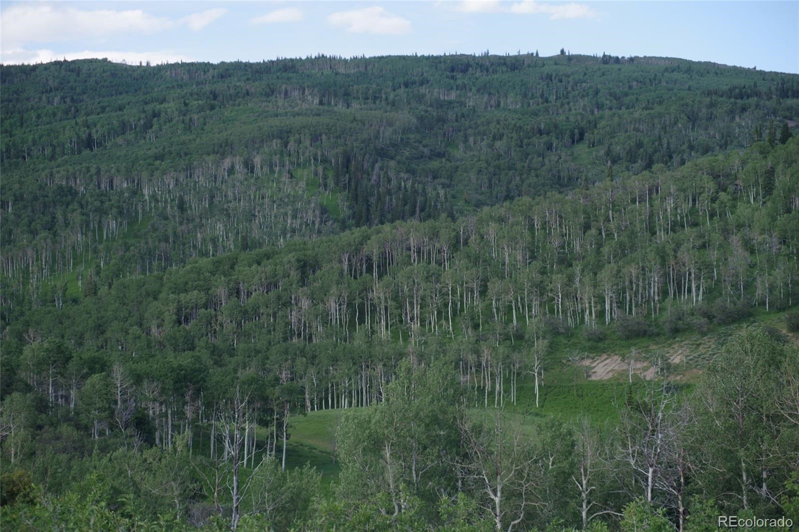 MLS# 1757508 - 11 - 15223 County Road 56 , Steamboat Springs, CO 81639