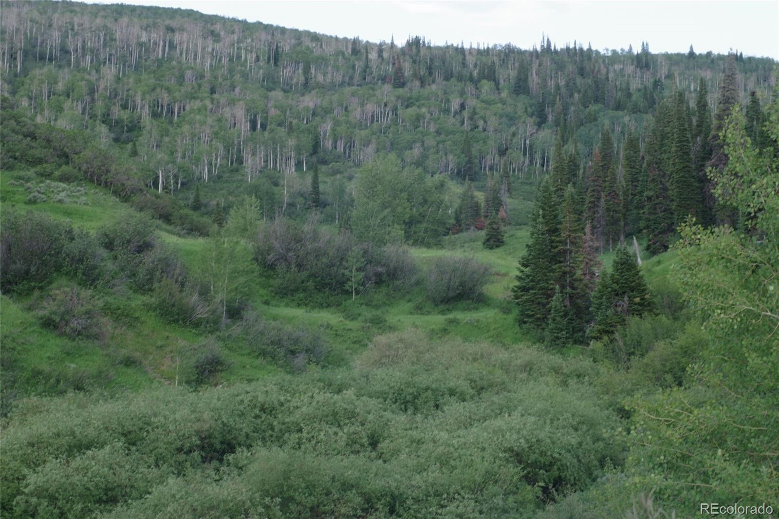 MLS# 1757508 - 16 - 15223 County Road 56 , Steamboat Springs, CO 81639