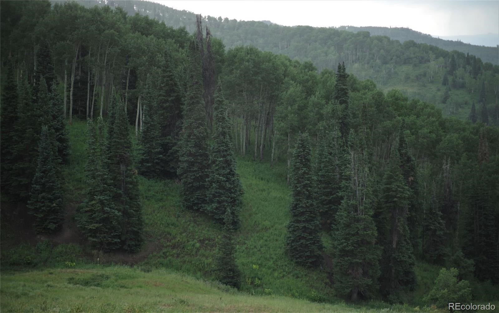 MLS# 1757508 - 20 - 15223 County Road 56 , Steamboat Springs, CO 81639