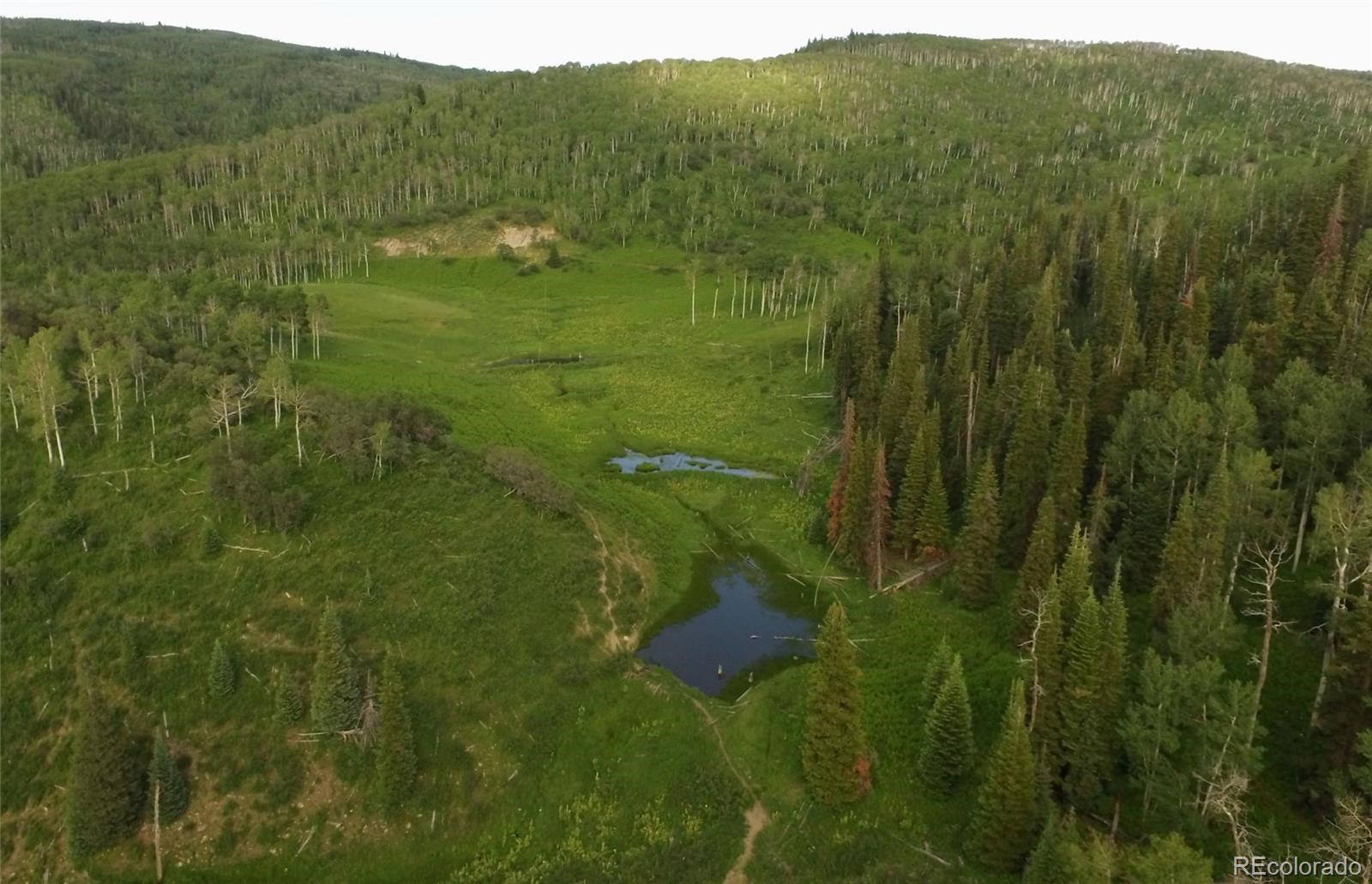 MLS# 1757508 - 21 - 15223 County Road 56 , Steamboat Springs, CO 81639