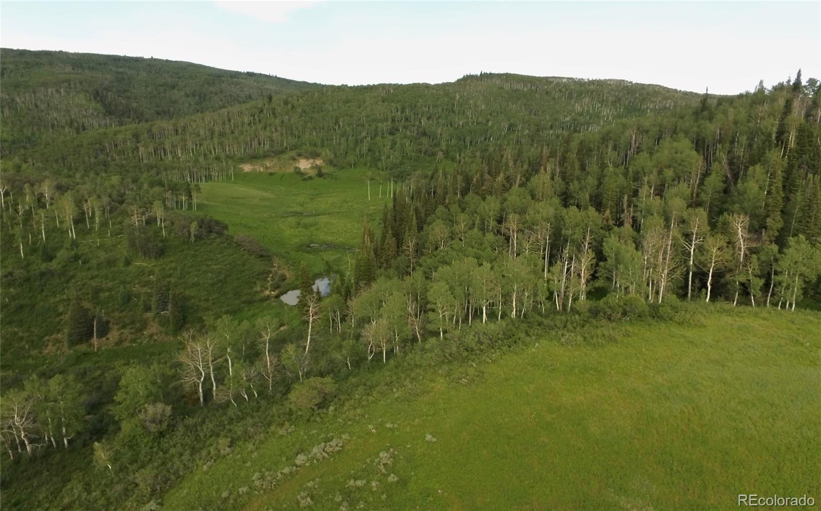 MLS# 1757508 - 22 - 15223 County Road 56 , Steamboat Springs, CO 81639