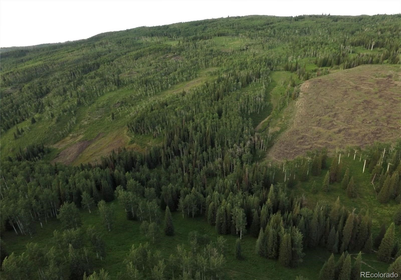 MLS# 1757508 - 24 - 15223 County Road 56 , Steamboat Springs, CO 81639