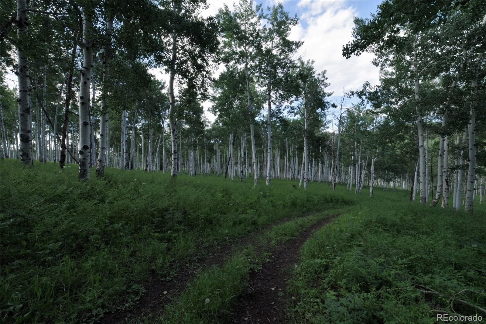 MLS# 1757508 - 25 - 15223 County Road 56 , Steamboat Springs, CO 81639