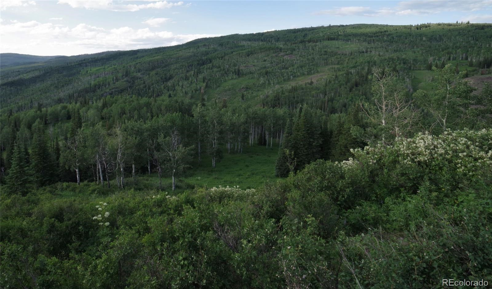 MLS# 1757508 - 28 - 15223 County Road 56 , Steamboat Springs, CO 81639