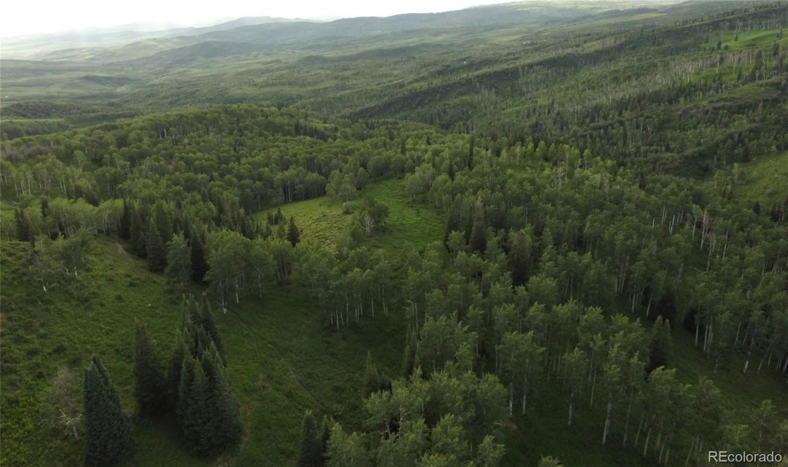 MLS# 1757508 - 31 - 15223 County Road 56 , Steamboat Springs, CO 81639