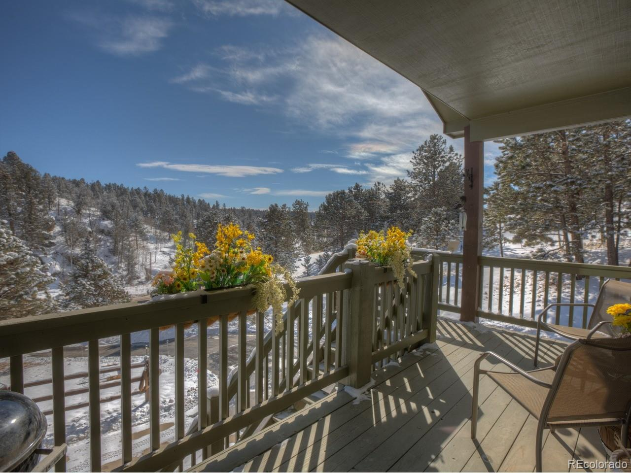 MLS# 1846801 - 3 - 449 Twin Lakes Drive, Divide, CO 80814