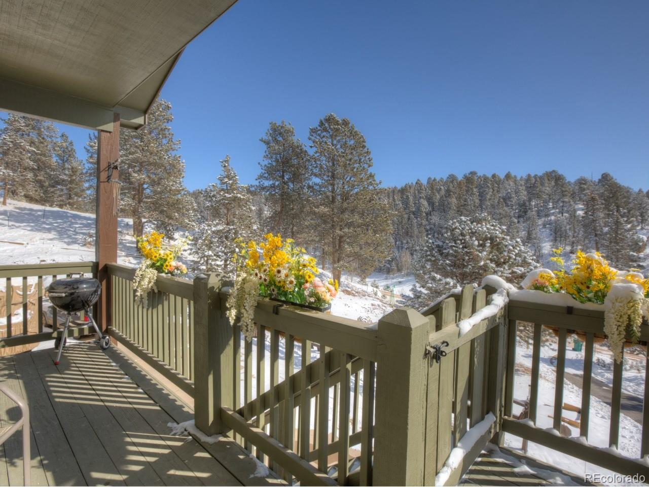 MLS# 1846801 - 4 - 449 Twin Lakes Drive, Divide, CO 80814
