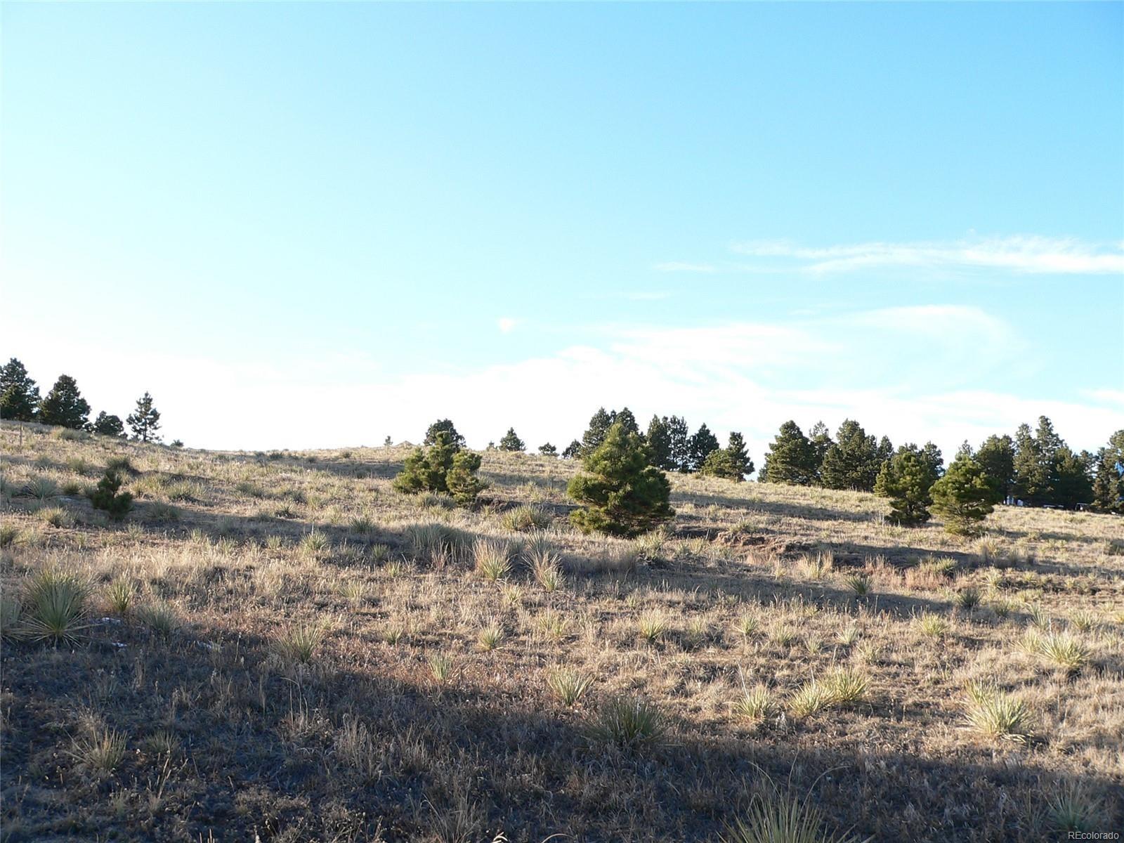 MLS# 1861476 - 1 - 27095  Pine Vista Circle, Kiowa, CO 80117