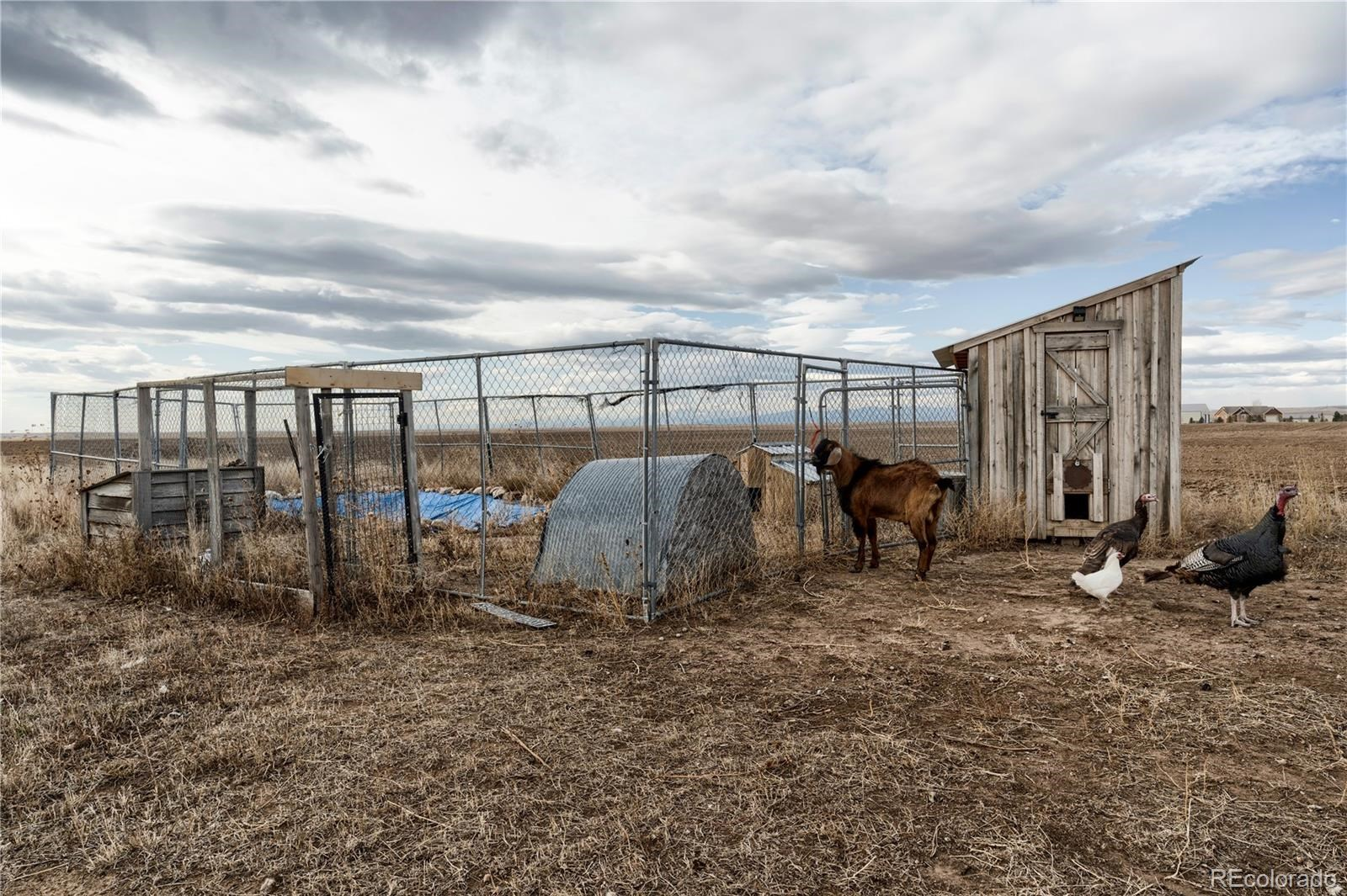 MLS# 1874600 - 27 - 12986 County Road 108 , Carr, CO 80612