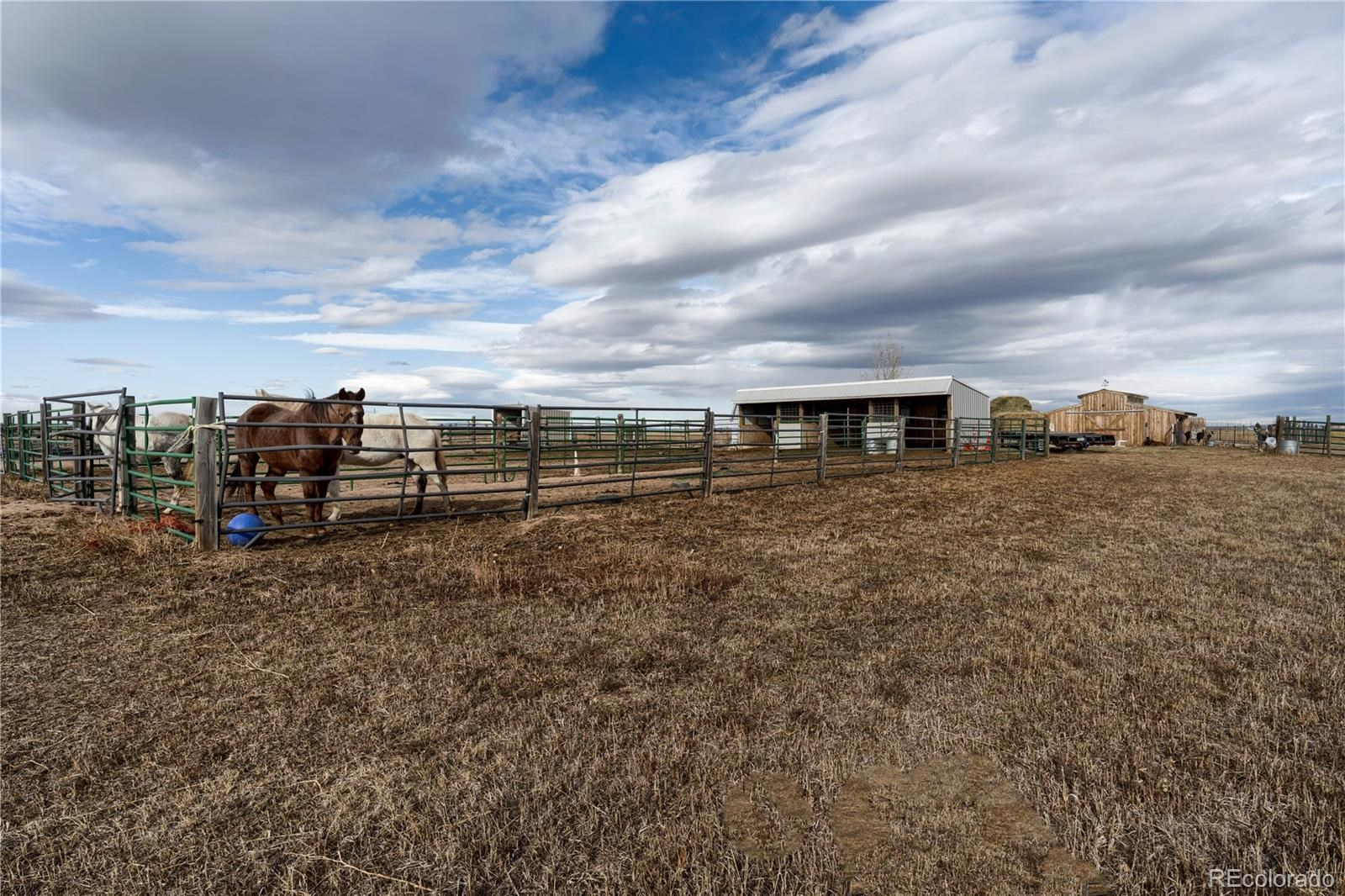 MLS# 1874600 - 7 - 12986 County Road 108 , Carr, CO 80612
